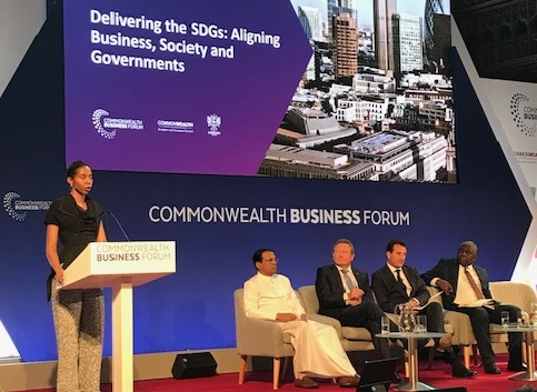 Delivering the SDGs: Aligning Business, Society and Governments